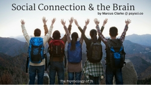 How Social Connection Rewires the Brain for the Better by Marcus Clarke